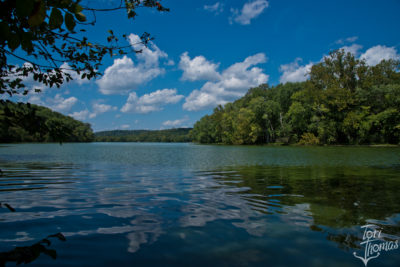 Radnor Lake in the Summer