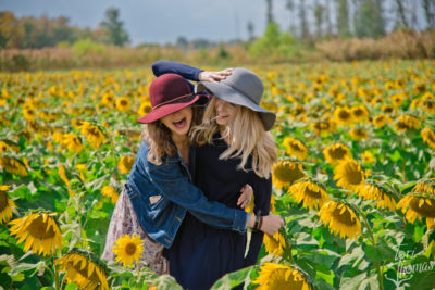 Sunflower Fields Forever Fall 2017